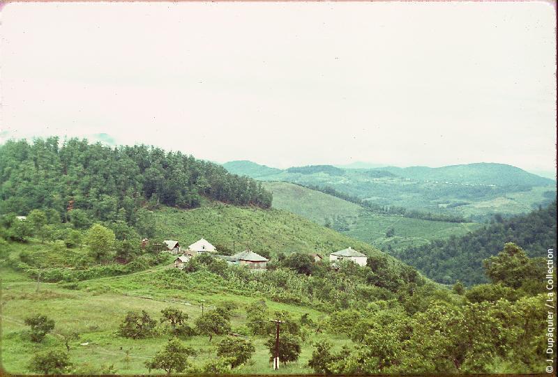 Дагомыс в 1964 году