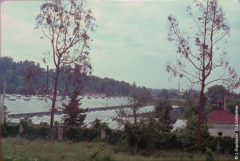 Кудепста в 1964 году