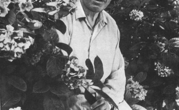 Зорин Фёдор Михайлович